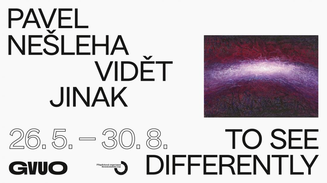 Pavel Nešleha / To See Differently